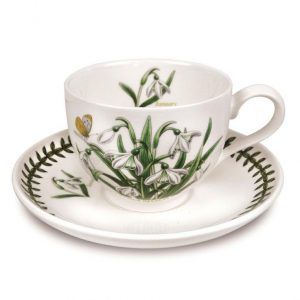 Botanic Garden Flower of the Month January Teacup and Saucer