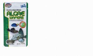 Hikari Algae Wafers 82g