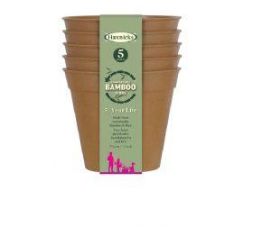Haxnicks Bamboo Pot 3in Terracotta x 5