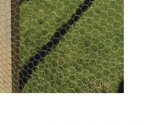 ApolloGardening Galvanised Wire Netting 900mm x 50mm x 5m