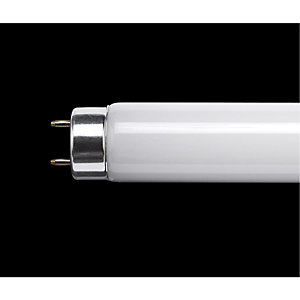 4ft T8 Fluorescent Tube