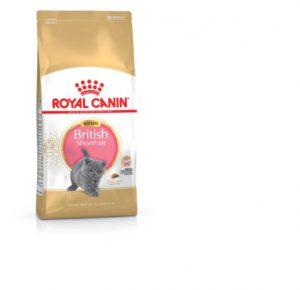 Royal Canin British Shorthair Kitten Dry Cat Food 2kg