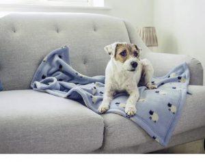 Zoon Fleece Comforter Count Sheep 100 x 70cm