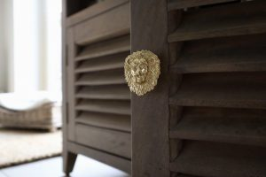 Drawer Knob Brass Lion