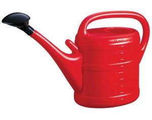 GreenWash Essential Watering Can Red 10L