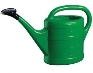 GreenWash Essential Watering Can Green 5L