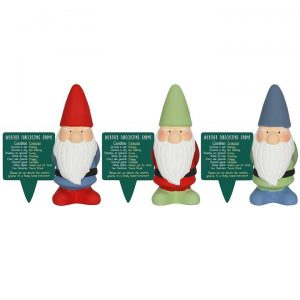 Weather Forecasting Gnome- Single Assorted colours